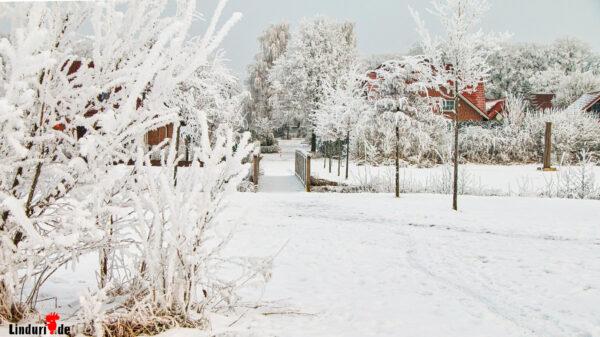 Schneewetter